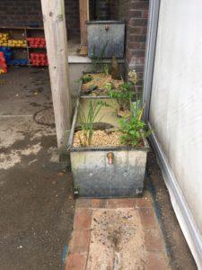 Rainwater harvesting at Fishponds Academy
