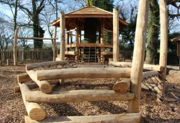 timber natural play equipment in woodland setting