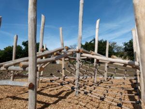 Pole Jungles